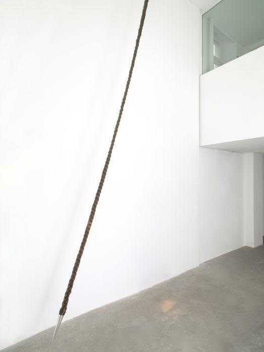 Mariana Vassileva / 2009 / pendelum / Artificial hair plumb / 700cm