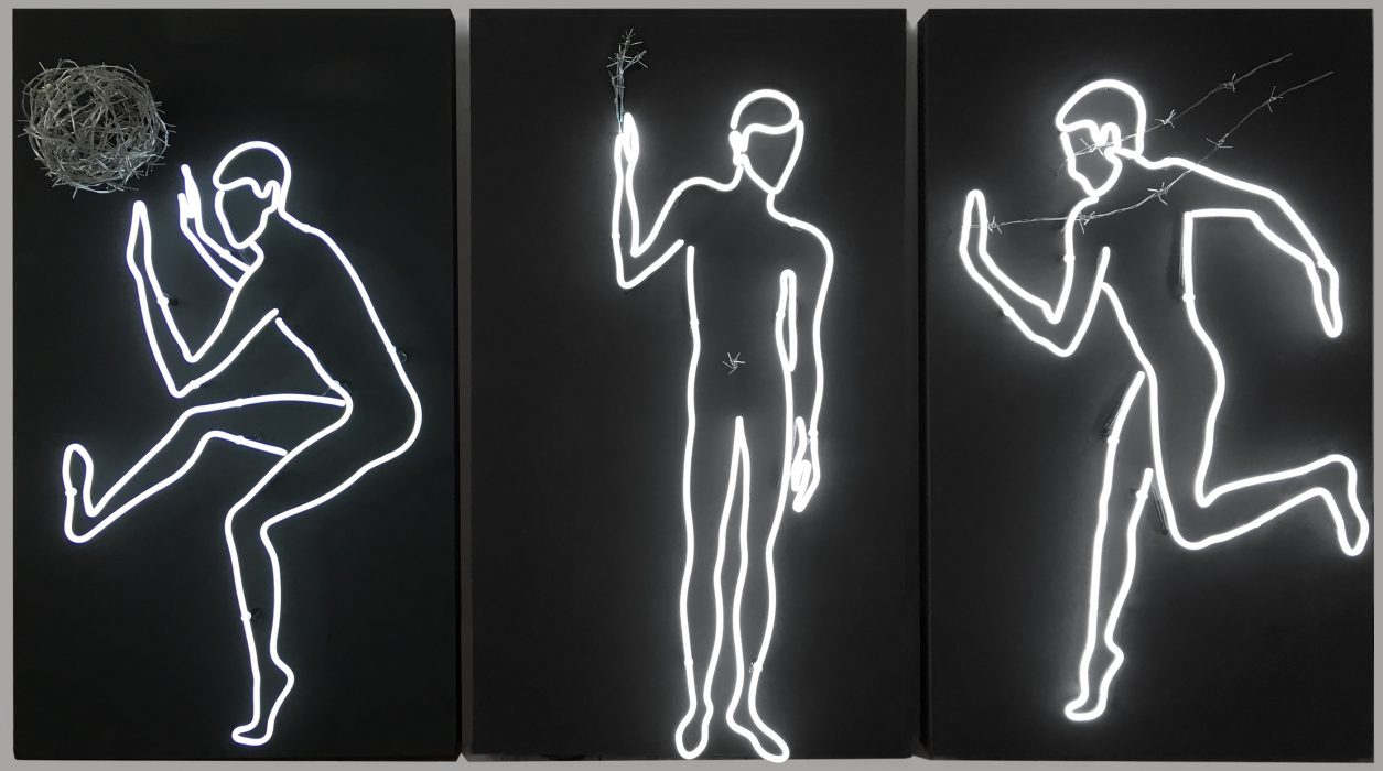Mariana Vassileva / 2015 / barbed wire and light / installation / barbed wire and neon / 250x120cm